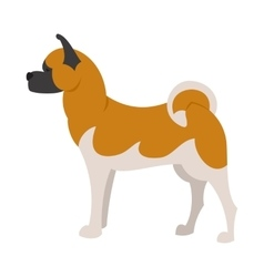 Akita breed dog vector