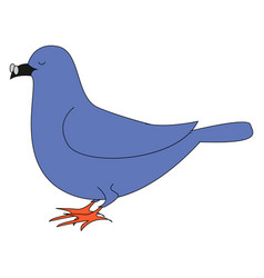 blue dove with glasses on white background vector image