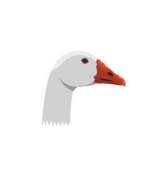 color image goose head on a white background vector image