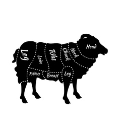 Cuts of Lamb or Mutton Diagram vector
