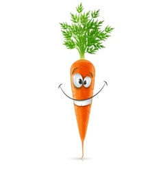 smiling carrot with top vector image vector image