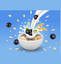 Oats in bowl with black currants vector