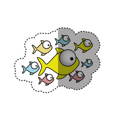 sticker colorful set collection fish aquatic vector image vector image