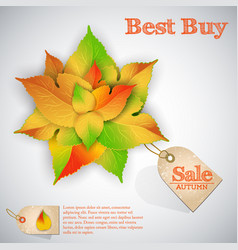 abstract autumn sale template vector image