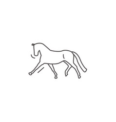 Dressage horse in gallop pirouette icon in sketch vector