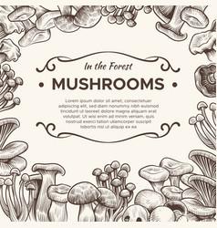 Mushrooms hand drawn mushroom champignon truffle vector