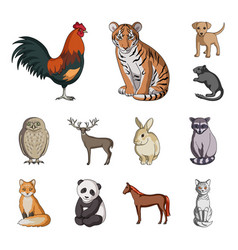 Realistic animals cartoon icons in set collection vector