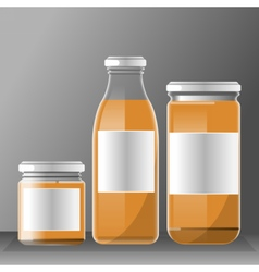 set of transparent glass or plastic orange vector image vector image
