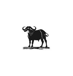 bull cow logo designs inspiration isolated on vector image