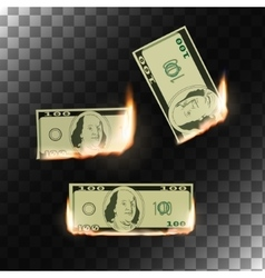 Burning money on transparent background vector