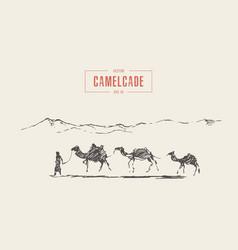 Caravan camels oasis desert draw sketch vector
