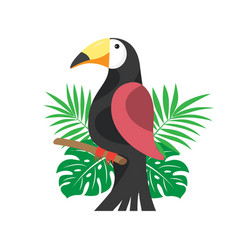 toucan and palm leaves on the white background vector image