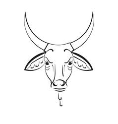 Head of the indian sacred cow zebu vector