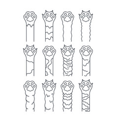 cat paws sketch line pets simple fun kitten vector image