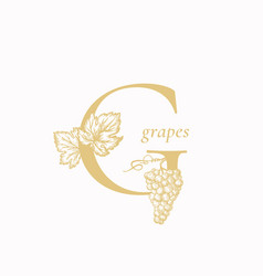 grape letter g abstract sign symbol or vector image