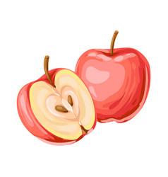 Ripe apple and slice vector