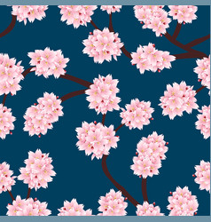 sakura cherry blossom on indigo blue background vector image
