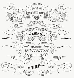 set of vintage styled calligraphic flourishes vector image