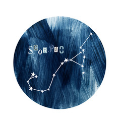 The scorpio zodiac constellation vector