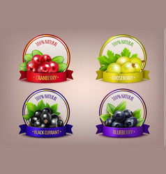 berry labels realistic eco collection vector image vector image