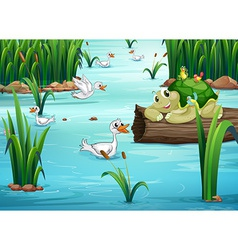 Animals and pond vector image
