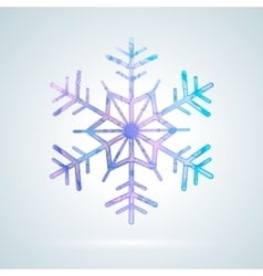 Bright colourful ice snowflake vector