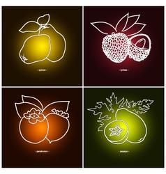 Persimmon Papaya Quince Lichee vector