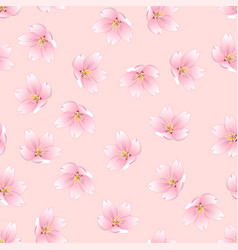 Sakura cherry blossom on pink background vector