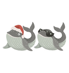 Set isolated bawhale with red santa hat and vector