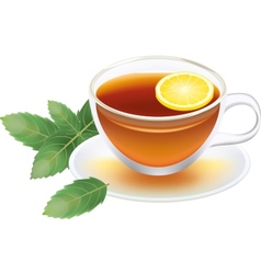 transparent cup of black tea with lemon and mint vector image