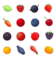 berries icons set cartoon style vector image vector image