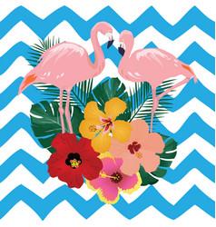 pink flamingos vector image