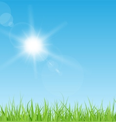 Sun and grass vector image