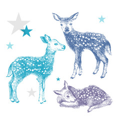 3 hand drawn colorful baby deers vector