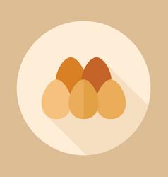 Chicken eggs icon vector