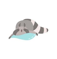 cute raccoon animal sleeping on pillow vector image