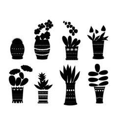 flowers in pots silhouette vector image
