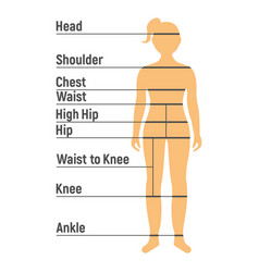Girl size chart human front side silhouette vector