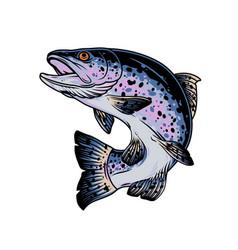 Rainbow trout vintage concept vector