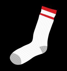 Socks clothing for feet vector