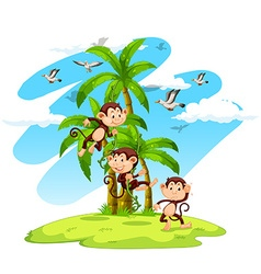 Three monkeys on the island vector image
