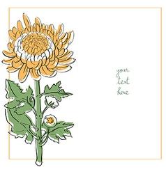 chrysanthemum minimal card vector image
