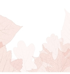 Detailed leaves background EPS 10 vector image