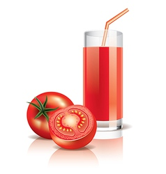object tomato juice vector image