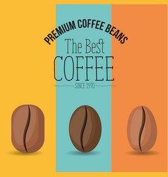 Color poster with set premium coffee beans of the vector