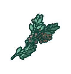 Colorful thick contour of branch with leaves and vector