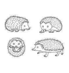 Cute hedgehogs in contours vector