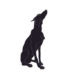 dog sitting silhouette vector image