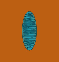 flat shading style icon mitochondrion vector image