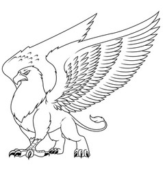 griffin line art vector image